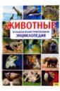 Скляр С. С. Животные. Большая иллюстрированная энциклопедия рублев с большая энциклопедия животных