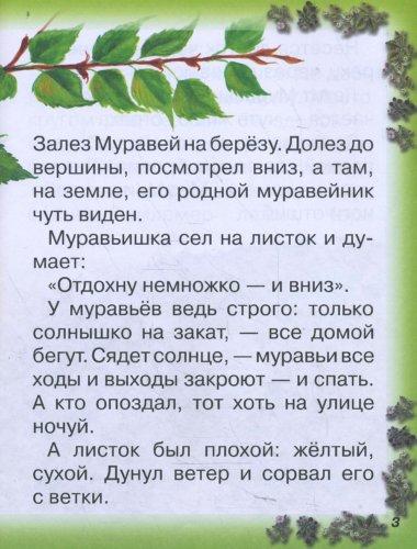 Иллюстрация 1 из 27 для Как Муравьишка домой спешил - Виталий Бианки | Лабиринт - книги. Источник: Лабиринт