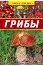 Аристамбекова Наталья Грибы. Энциклопедия