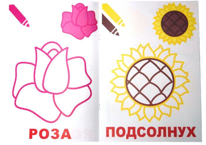 Иллюстрация 1 из 12 для Маленький художник:  Выпуск 11. Цветы | Лабиринт - книги. Источник: Лабиринт