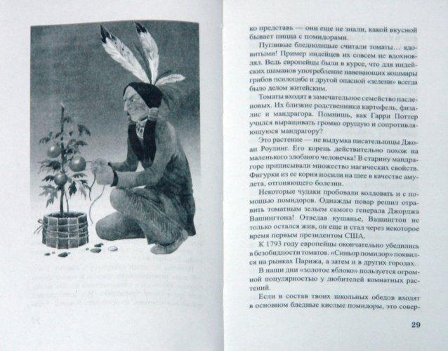 Иллюстрация 1 из 18 для Клад на подоконнике - Ольга Кувыкина   Лабиринт - книги. Источник: Лабиринт