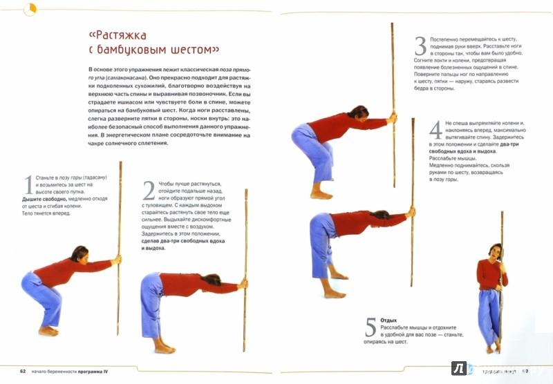 Иллюстрация 1 из 6 для Йога для беременных. Легкие роды, стройность, здоровье - Розалин Виддоусон   Лабиринт - книги. Источник: Лабиринт