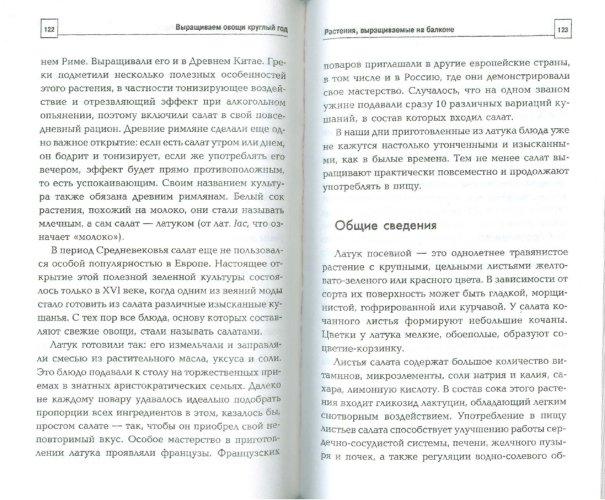 Иллюстрация 1 из 9 для Выращиваем овощи круглый год - Доброва, Исаева | Лабиринт - книги. Источник: Лабиринт