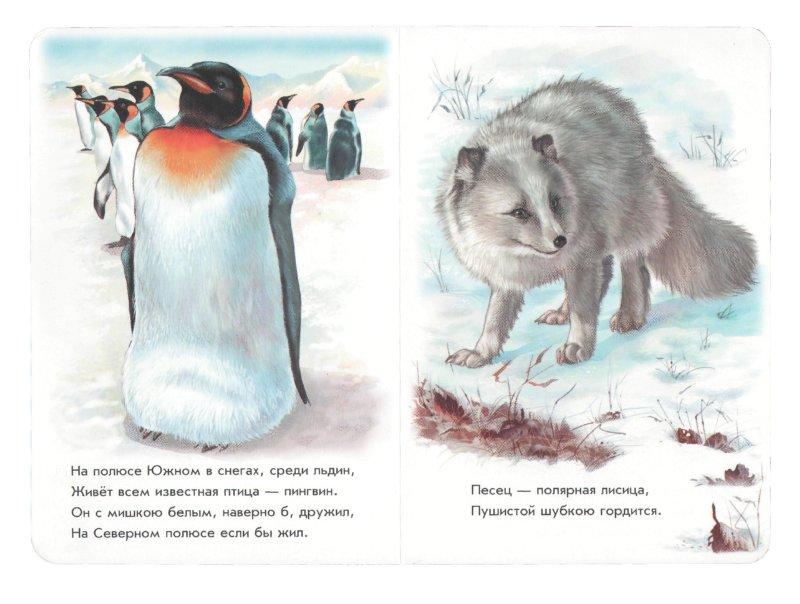 Иллюстрация 1 из 21 для Любимый зоопарк - Олеся Квитка   Лабиринт - книги. Источник: Лабиринт