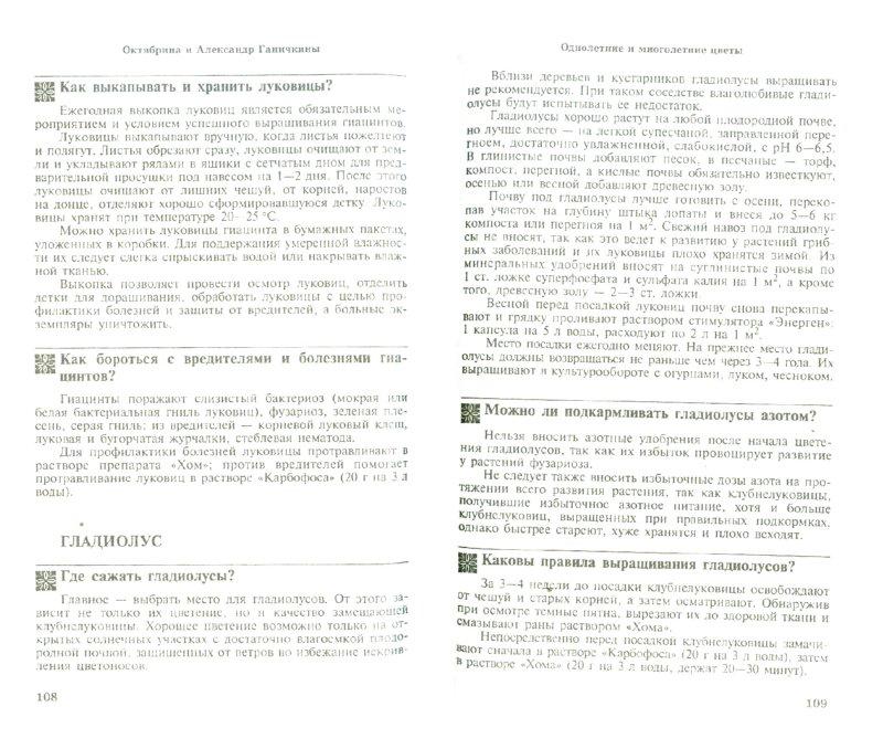 Иллюстрация 1 из 6 для Цветоводам. 300 самых важных вопросов, 300 самых полных ответов - Ганичкина, Ганичкин | Лабиринт - книги. Источник: Лабиринт