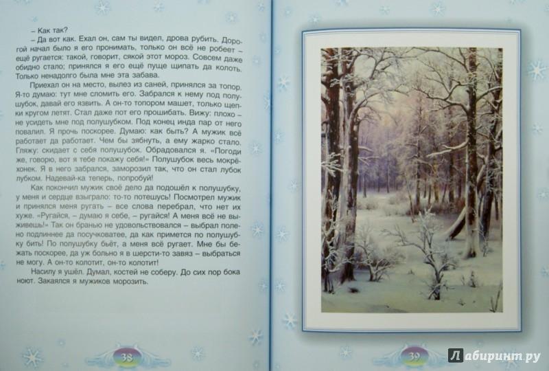 Иллюстрация 1 из 12 для Зимние сказки | Лабиринт - книги. Источник: Лабиринт