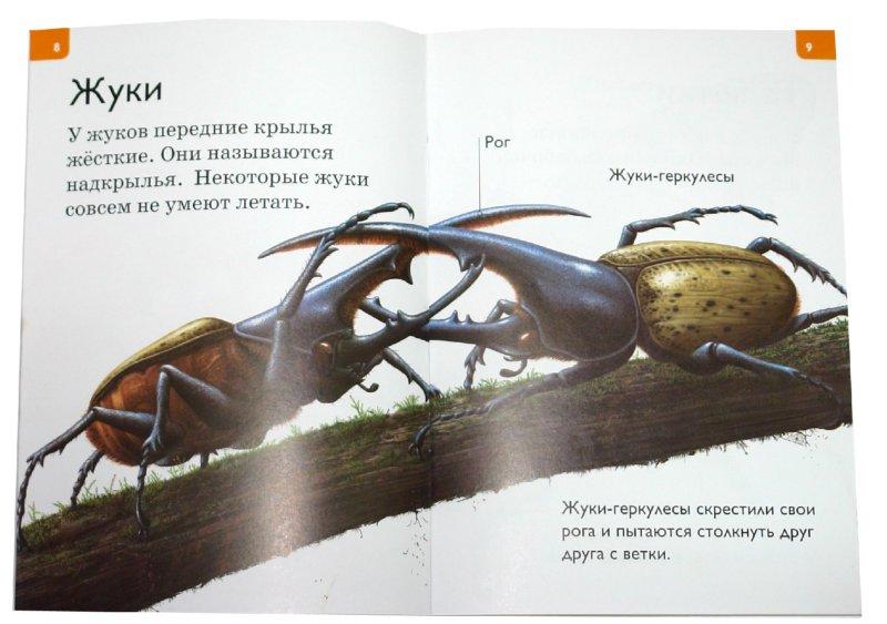 Иллюстрация 1 из 18 для Насекомые и пауки - Дениз Райан | Лабиринт - книги. Источник: Лабиринт