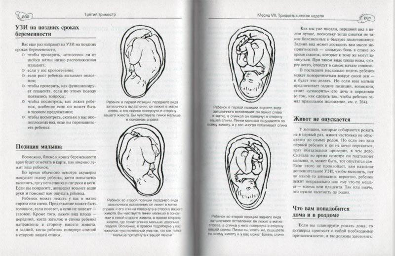 Иллюстрация 1 из 4 для Беременность. Шаг за шагом - Макгрейл, Метланд | Лабиринт - книги. Источник: Лабиринт