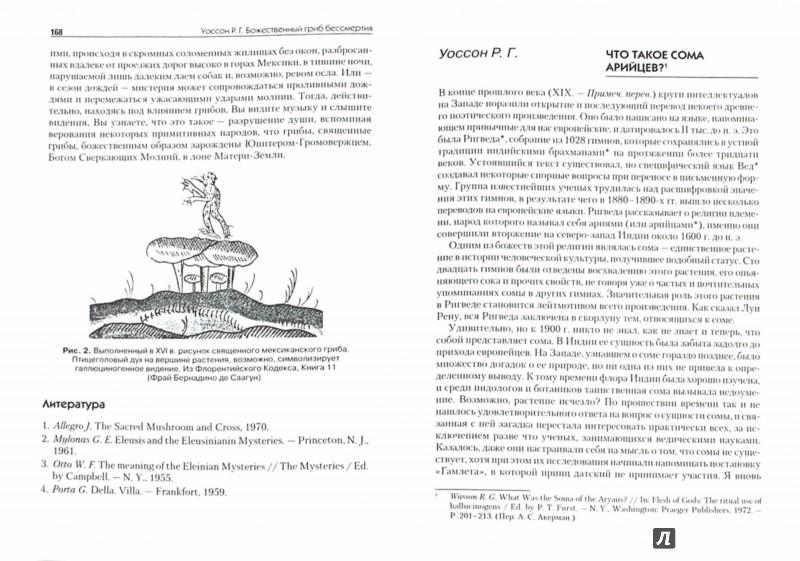 Иллюстрация 1 из 19 для Измененные состояния сознания и культура. Хрестоматия - Ольга Гордеева | Лабиринт - книги. Источник: Лабиринт