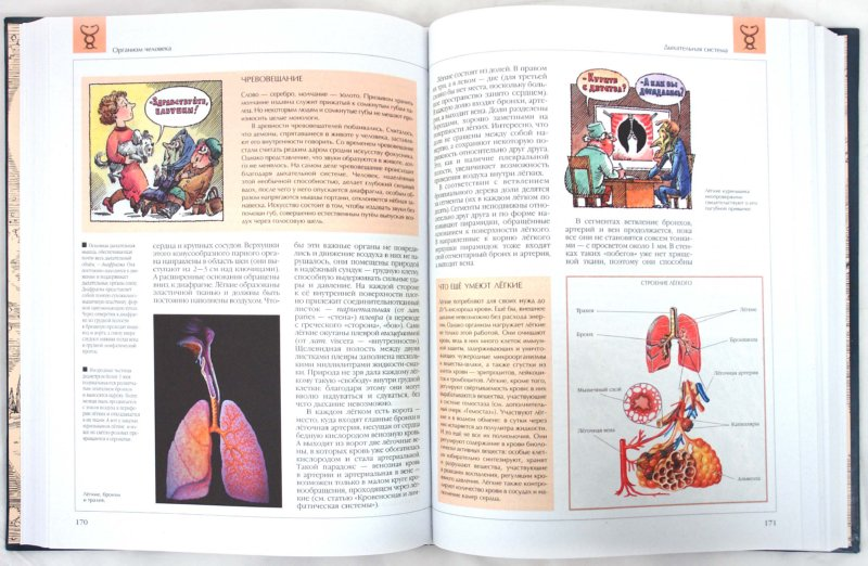 Иллюстрация 1 из 24 для Человек часть 1. Энциклопедия для детей - Аксенова | Лабиринт - книги. Источник: Лабиринт