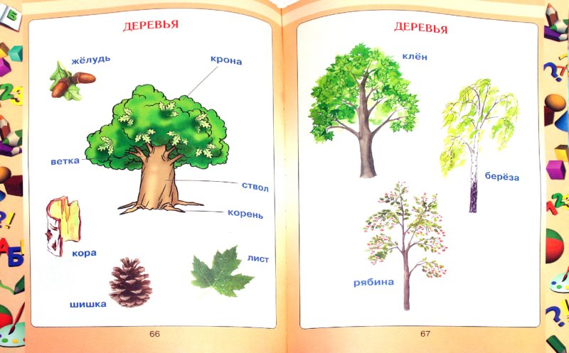 Иллюстрация 1 из 16 для Первая книга малыша - Елена Чайка | Лабиринт - книги. Источник: Лабиринт