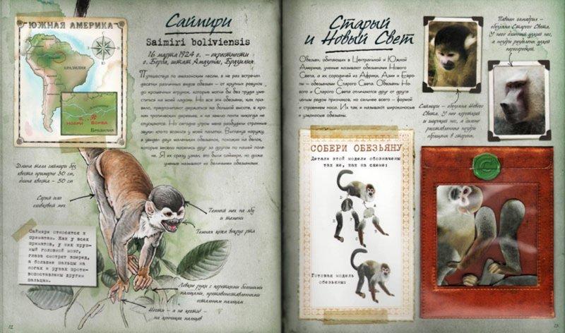 Иллюстрация 1 из 14 для Путешествие по Амазонке - Филлис Перри | Лабиринт - книги. Источник: Лабиринт