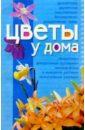 Олянюк Наталья Цветы у дома. Мини-энциклопедия