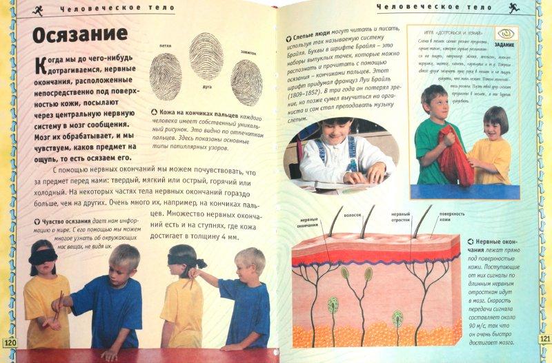 Иллюстрация 1 из 19 для Моя первая энциклопедия - Нейл Моррис | Лабиринт - книги. Источник: Лабиринт