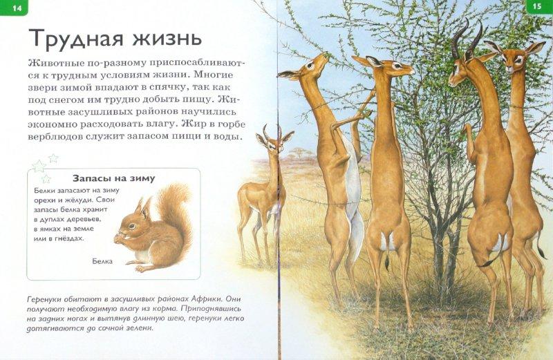 Иллюстрация 1 из 25 для Капризы природы - Роберт Коуп | Лабиринт - книги. Источник: Лабиринт