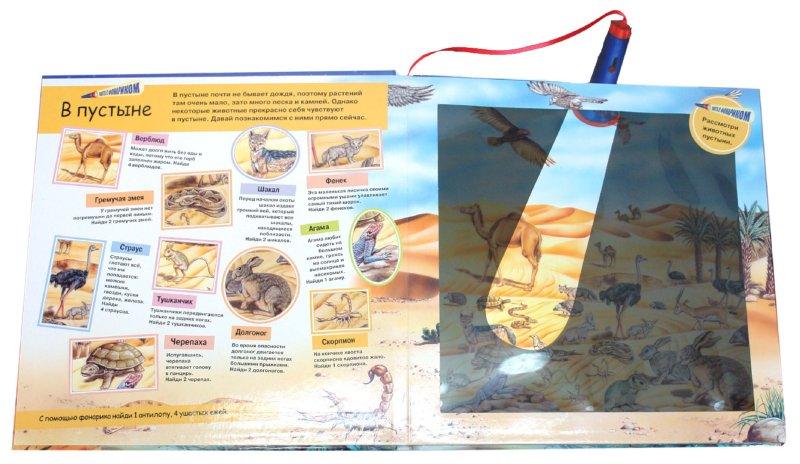 Иллюстрация 1 из 21 для Охота с фонариком: Дикие животные | Лабиринт - книги. Источник: Лабиринт