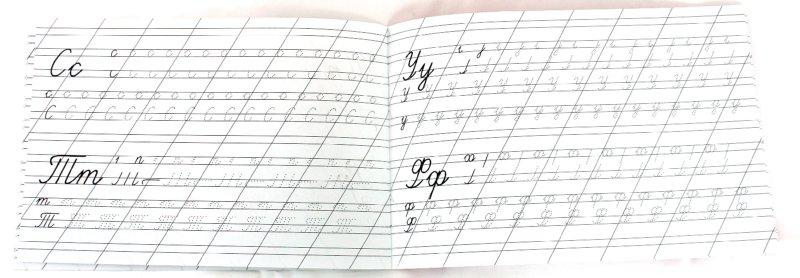 Иллюстрация 1 из 35 для Прописи. Пишем буквы (мышки) | Лабиринт - книги. Источник: Лабиринт