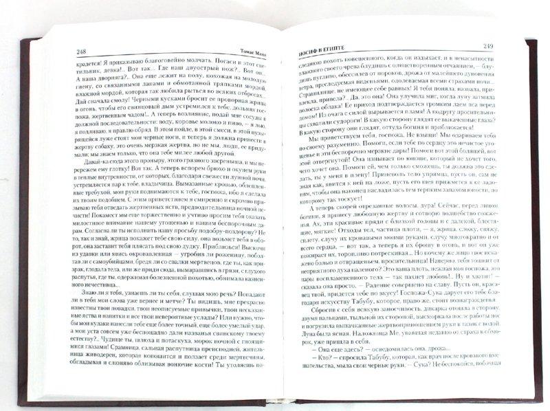 Иллюстрация 1 из 15 для Иосиф и его братья. В 2-х томах. Том 2. Иосиф в Египте - Томас Манн | Лабиринт - книги. Источник: Лабиринт