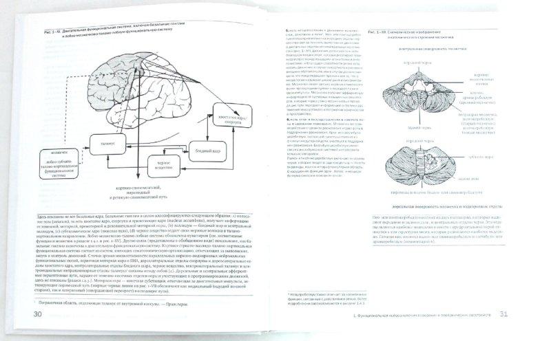 Иллюстрация 1 из 10 для Детская поведенческая неврология. В 2-х томах. Том 1 - Чарльз Ньокиктьен | Лабиринт - книги. Источник: Лабиринт