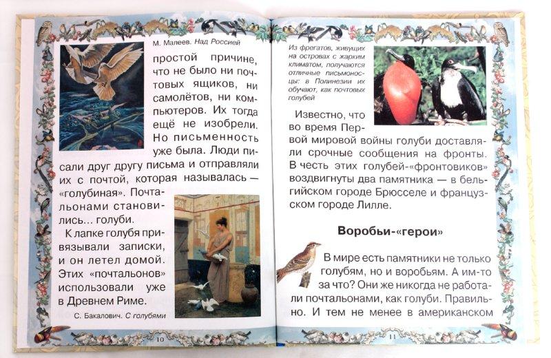 Иллюстрация 1 из 18 для Птичьи секреты - Валерий Роньшин | Лабиринт - книги. Источник: Лабиринт