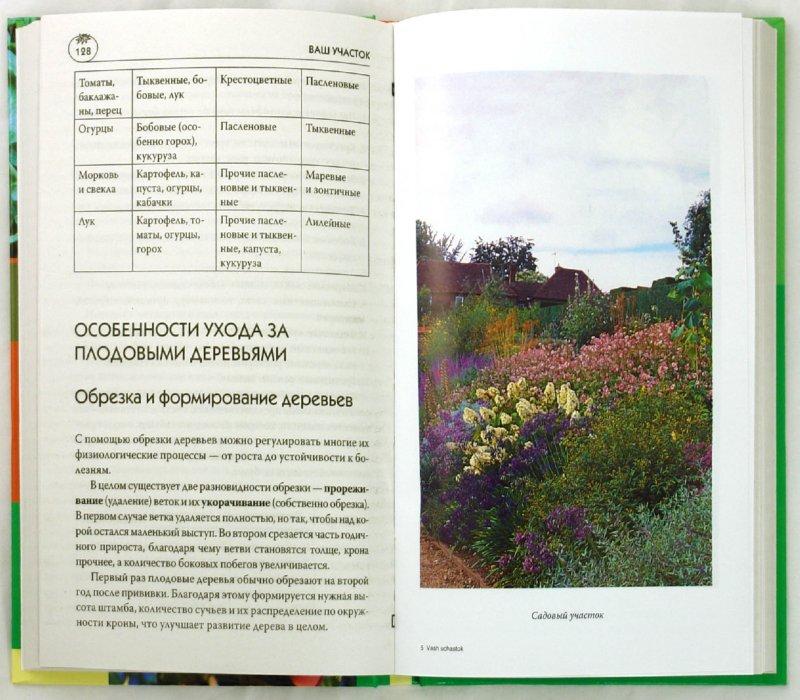 Иллюстрация 1 из 28 для Ваш участок - Мария Цветкова   Лабиринт - книги. Источник: Лабиринт