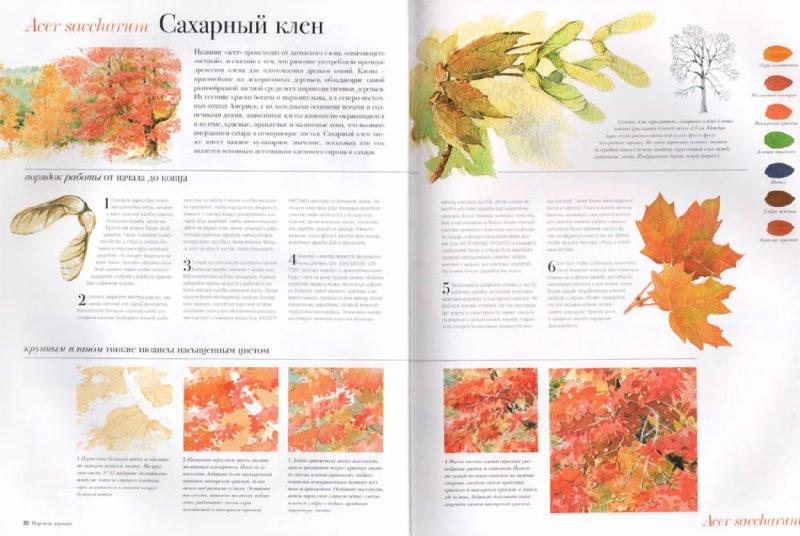 Иллюстрация 1 из 19 для Акварель. Рисуем деревья и листья - Аделин Флетчер | Лабиринт - книги. Источник: Лабиринт
