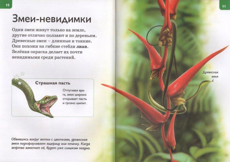 Иллюстрация 1 из 20 для Маскировка - Роберт Коуп | Лабиринт - книги. Источник: Лабиринт