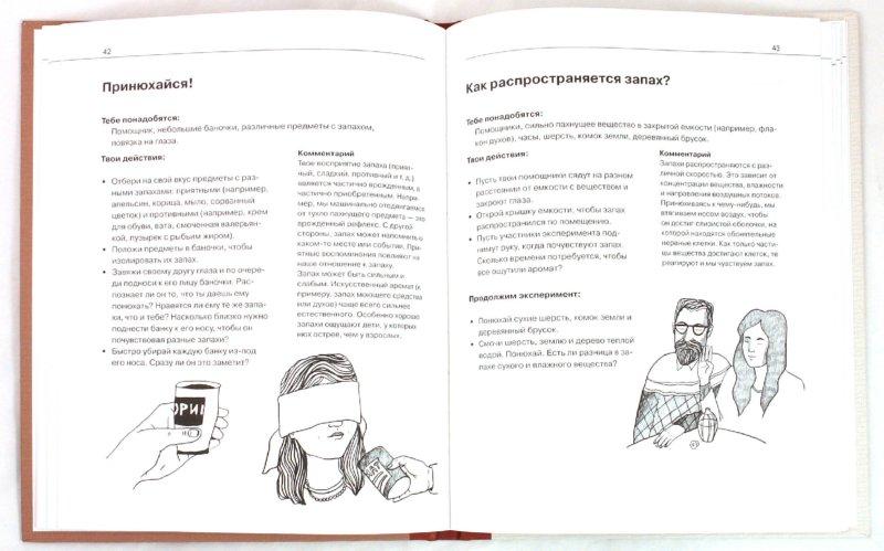 Иллюстрация 3 из 11 для Что умеет наше тело? - Фреск, Фреск | Лабиринт - книги. Источник: Лабиринт