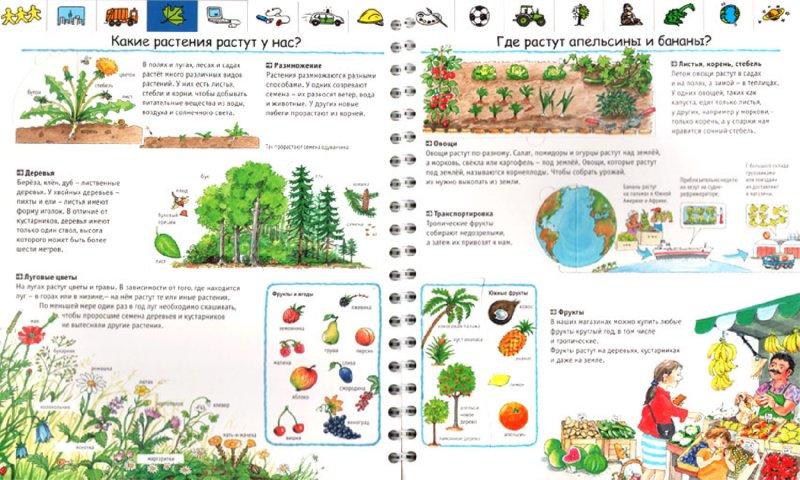 Иллюстрация 1 из 23 для Моя первая энциклопедия - Андреа Эрне | Лабиринт - книги. Источник: Лабиринт