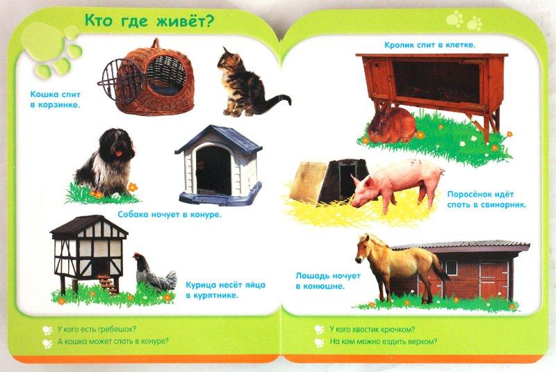 Иллюстрация 1 из 9 для Жизнь животных (от 3-х лет) | Лабиринт - книги. Источник: Лабиринт