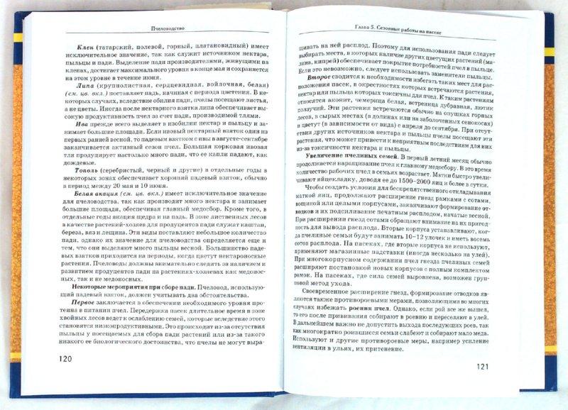 Иллюстрация 1 из 3 для Пчеловодство - Комлацкий, Логинов, Плотников | Лабиринт - книги. Источник: Лабиринт