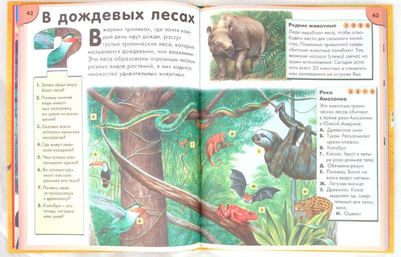 Иллюстрация 1 из 35 для Что такое? Кто такой? | Лабиринт - книги. Источник: Лабиринт