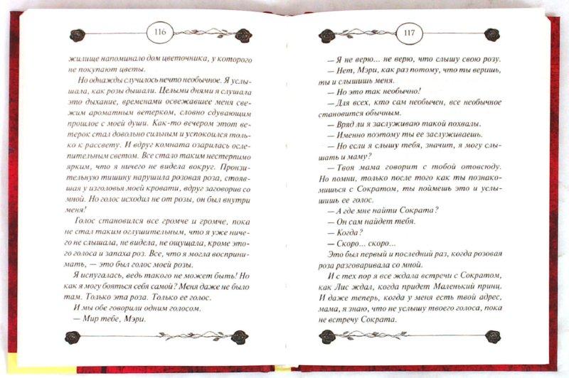 Иллюстрация 1 из 13 для Сердце розы - Сердар Озкан | Лабиринт - книги. Источник: Лабиринт