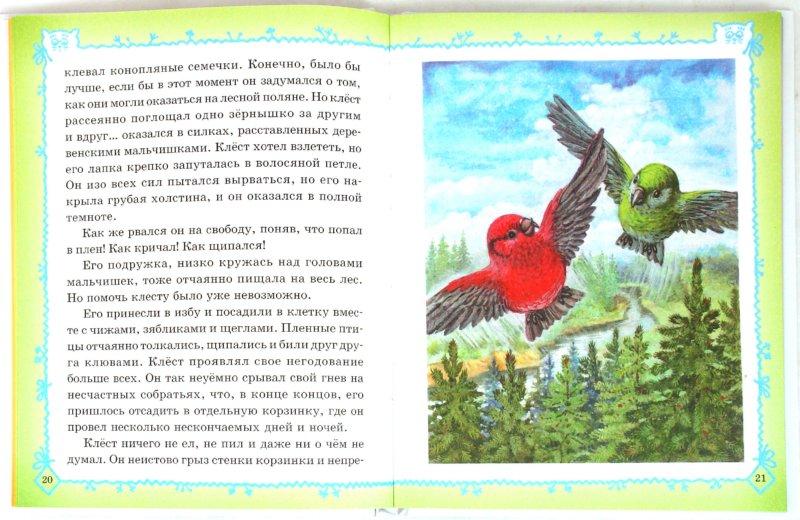 Иллюстрация 1 из 60 для Сказки Кота-Мурлыки | Лабиринт - книги. Источник: Лабиринт