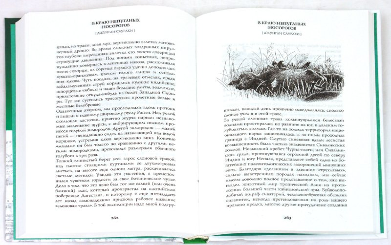 Иллюстрация 1 из 22 для В краю непуганых носорогов - Евгений Коблик   Лабиринт - книги. Источник: Лабиринт
