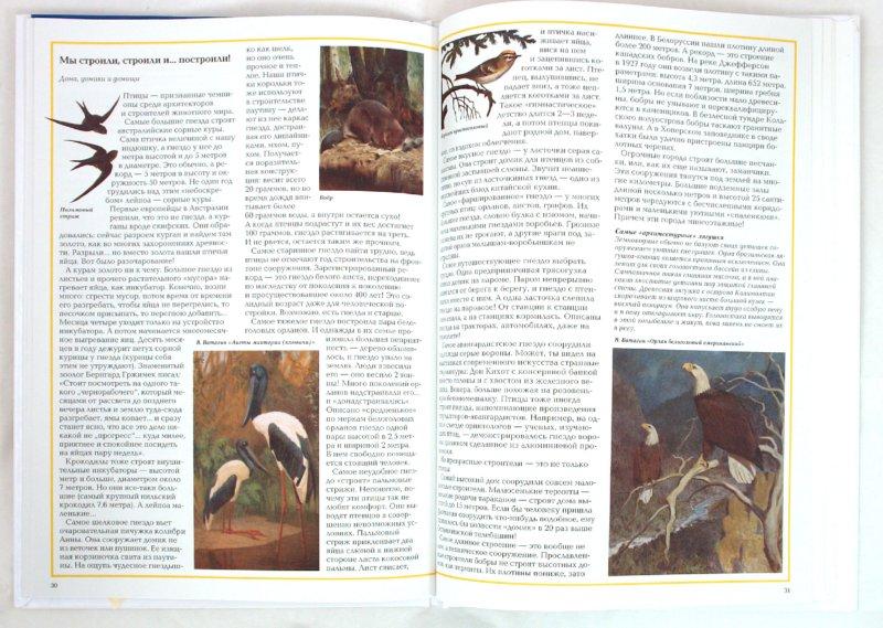 Иллюстрация 1 из 50 для Самые-самые в мире животных - Светлана Лаврова   Лабиринт - книги. Источник: Лабиринт