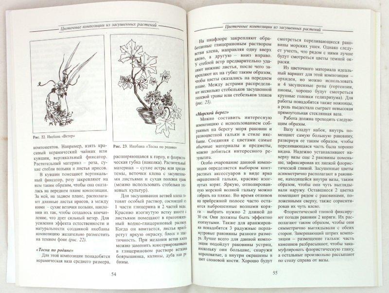 Иллюстрация 1 из 9 для Второе рождение цветка - Наталья Сарафанова   Лабиринт - книги. Источник: Лабиринт