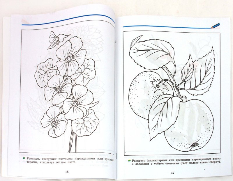 Иллюстрация 1 из 21 для Изобразительное искусство. 4 класс. Рабочая тетрадь - Кузин, Кубышкина | Лабиринт - книги. Источник: Лабиринт