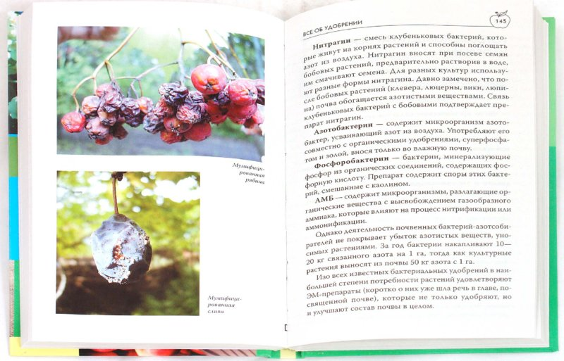 Иллюстрация 1 из 31 для Умный садовод - Мария Цветкова | Лабиринт - книги. Источник: Лабиринт