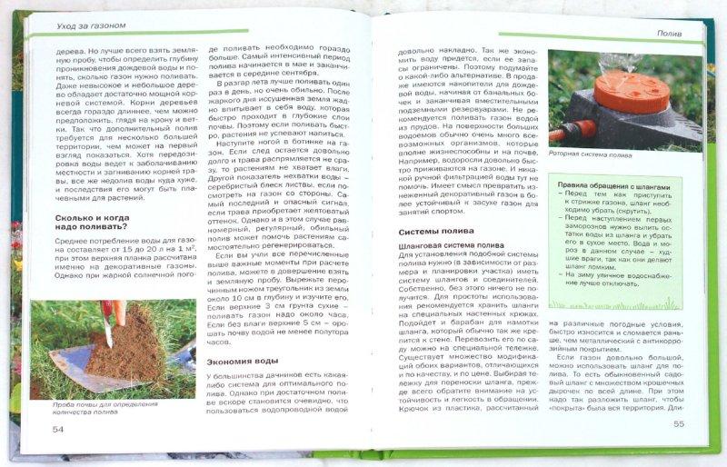 Иллюстрация 1 из 37 для Идеальный газон в вашем саду: Подготовка. Посев. Уход - Криста Лунг | Лабиринт - книги. Источник: Лабиринт