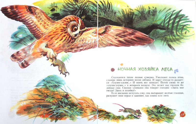 Иллюстрация 1 из 25 для Кто барабанит в лесу? Книга для чтения детям - Александр Тамбиев | Лабиринт - книги. Источник: Лабиринт