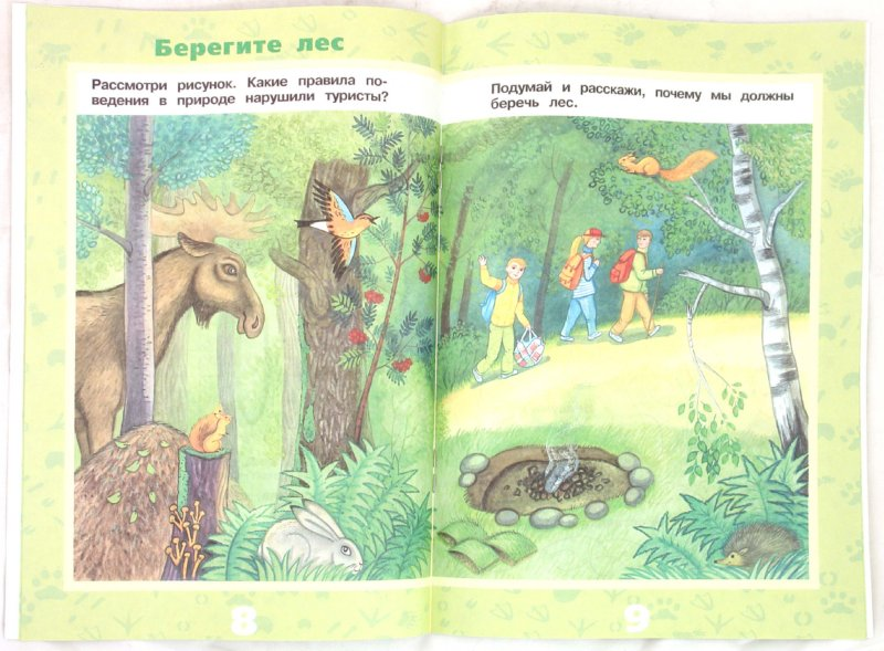 Иллюстрация 1 из 29 для Животные леса - Ольга Тишурина | Лабиринт - книги. Источник: Лабиринт