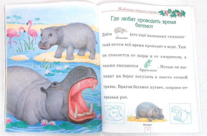 Иллюстрация 1 из 13 для Мир животных - Александрова, Дроздова   Лабиринт - книги. Источник: Лабиринт