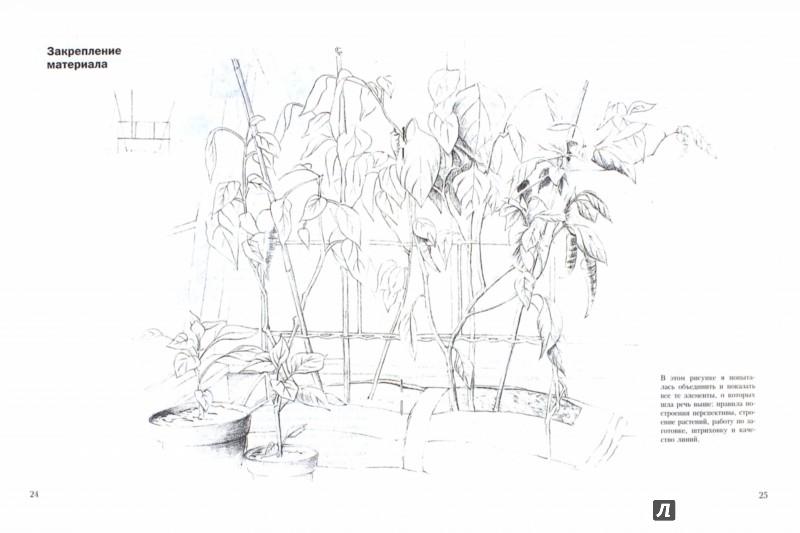 Иллюстрация 1 из 46 для Учитесь рисовать ваш сад - Кэрол Винсер | Лабиринт - книги. Источник: Лабиринт