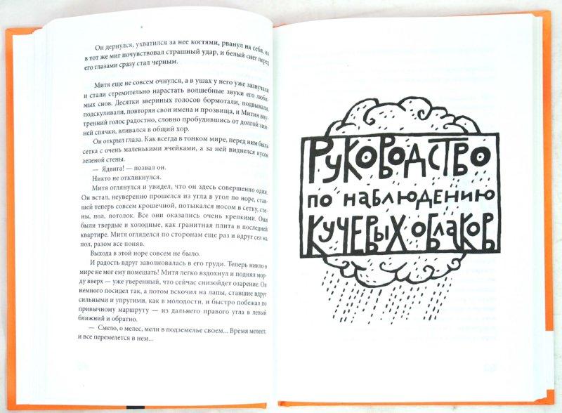 Иллюстрация 1 из 13 для Сказки не про людей - Андрей Степанов | Лабиринт - книги. Источник: Лабиринт