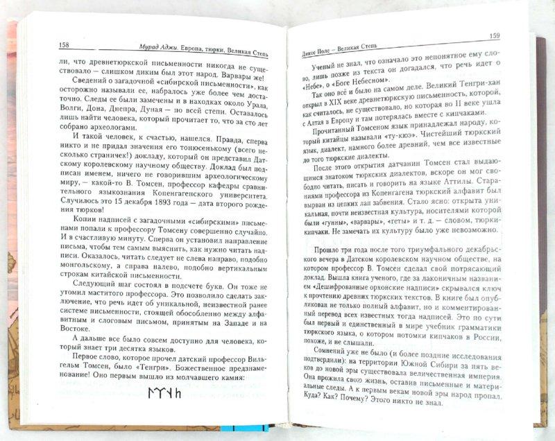 Иллюстрация 1 из 2 для Европа, тюрки, Великая Степь - Мурад Аджи   Лабиринт - книги. Источник: Лабиринт