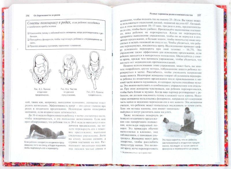 Иллюстрация 1 из 4 для От беременности до родов: шаг за шагом в ожидании ребенка = Беременность и материнство: пошаг. справ - Голдберг, Бринкли, Кукар | Лабиринт - книги. Источник: Лабиринт