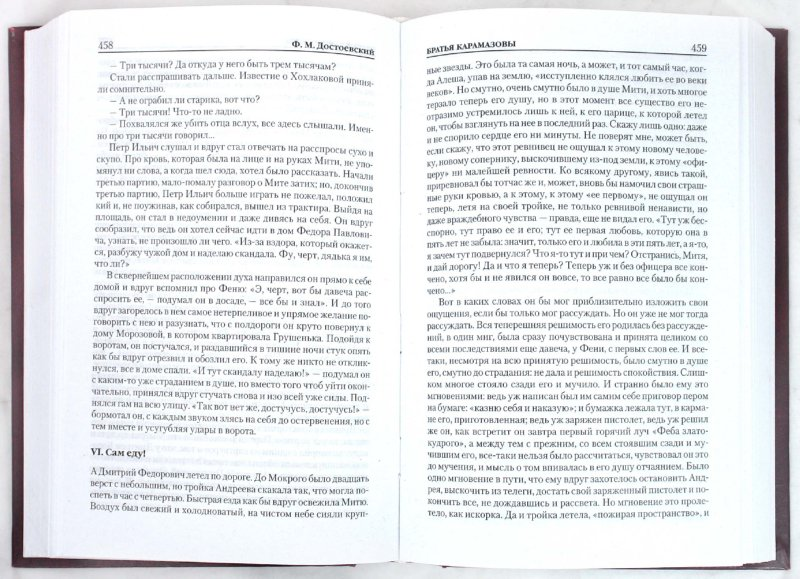 Иллюстрация 1 из 10 для Братья Карамазовы - Федор Достоевский | Лабиринт - книги. Источник: Лабиринт