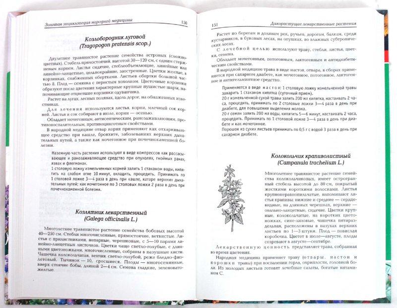 Иллюстрация 1 из 15 для Золотая энциклопедия народной медицины - Тамара Никитина | Лабиринт - книги. Источник: Лабиринт