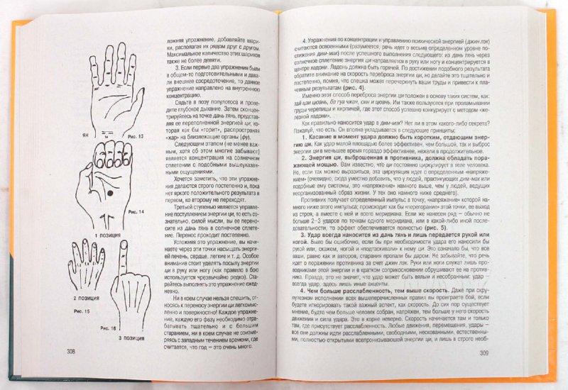 Иллюстрация 1 из 14 для Школа ниндзя - Виктор Попенко | Лабиринт - книги. Источник: Лабиринт